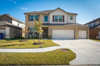 Manvel Single Family Home For Sale: 44 Alyssa Palms Drive