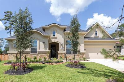Pinehurst Single Family Home For Sale: 210 Lagarto Court