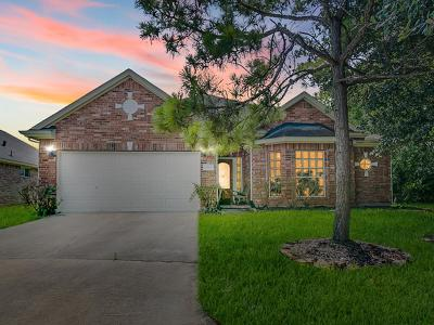 Tomball Single Family Home For Sale: 17602 Berry Shoals Lane