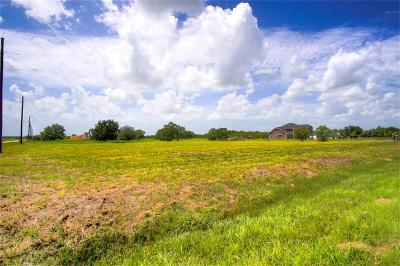 Katy Residential Lots & Land For Sale: 5201 Katy Hockley