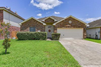 Tomball Single Family Home For Sale: 12922 Pine Meadows Street