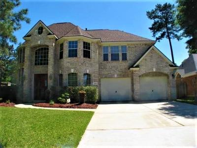Tomball Single Family Home For Sale: 14203 Orion Drive