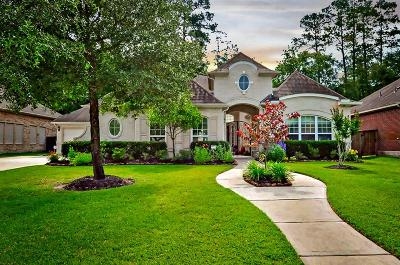 Porter Single Family Home For Sale: 24621 Hosford Meadows Drive Drive