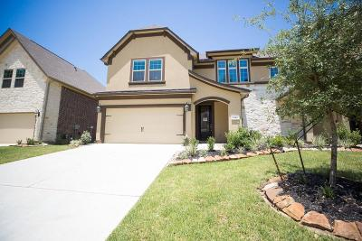 Conroe Condo/Townhouse For Sale: 131 Skybranch Drive