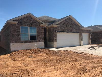 Grimes County Single Family Home For Sale: 7704 Bogie Lane Drive