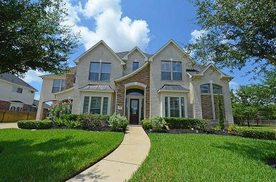 Katy Single Family Home For Sale: 3506 Artesian Springs Court