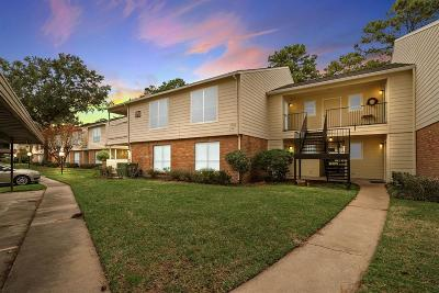 Houston Condo/Townhouse For Sale: 14555 Wunderlich Drive #2502