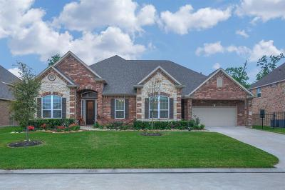 Galveston County, Harris County Single Family Home For Sale: 24914 Auburn Bend Drive