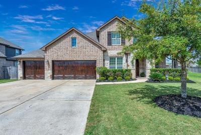 Fulshear Single Family Home For Sale: 29918 Valley Terrace Drive