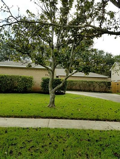 Sugar Land Single Family Home For Sale: 2747 Colony Drive