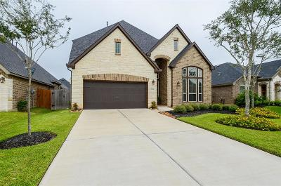 Katy Single Family Home For Sale: 29318 Ribbongrass Court