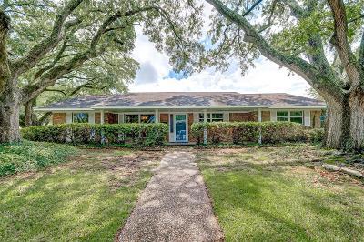 Baytown Single Family Home For Sale: 2207 Palomar Street