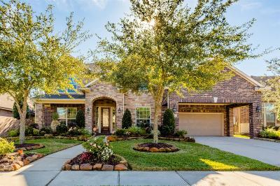 Friendswood Single Family Home For Sale: 108 Chiselstone Court