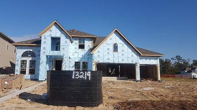Houston Single Family Home For Sale: 13219 Whisper Hollow