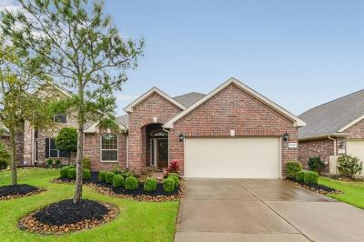 Rosharon Single Family Home For Sale: 5209 Pale Sage Lane