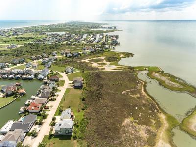 Galveston Single Family Home For Sale: 22402 Bay Vista