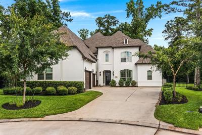 Tomball Single Family Home For Sale: 47 Red Moon Place