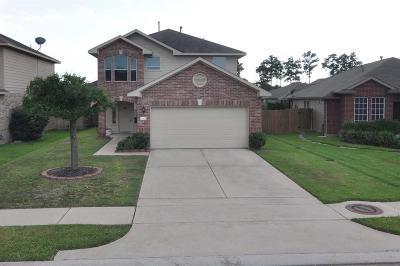 Tomball Single Family Home For Sale: 11423 Hemington Drive