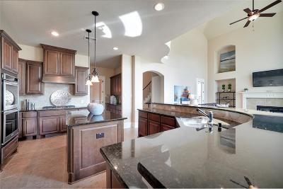 Sugar Land Single Family Home For Sale: 5027 Skipping Stone Lane