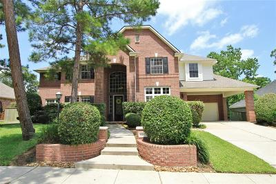 Houston Single Family Home For Sale: 6207 Silver Dawn Court
