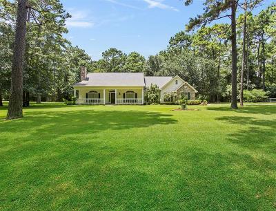 Conroe Single Family Home For Sale: 13230 Stonecrest Lane