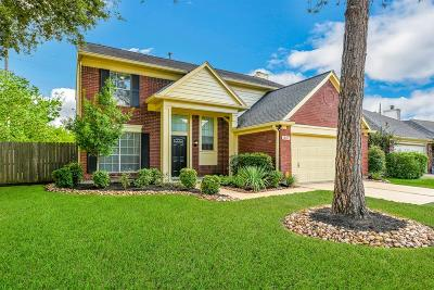 Houston Single Family Home For Sale: 18147 River Sage Drive
