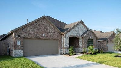 Conroe Single Family Home For Sale: 14133 Emory Peak Court