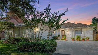 Sugar Land Single Family Home For Sale: 326 Lakeside Boulevard