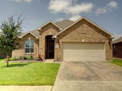 Houston Single Family Home For Sale: 11010 W View Meadow Loop