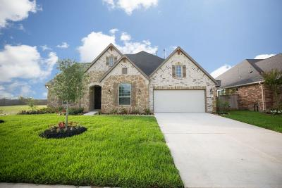 Katy Single Family Home For Sale: 1611 Carriage Oaks Lane