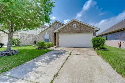 Houston Single Family Home For Sale: 2043 Fallow Lane