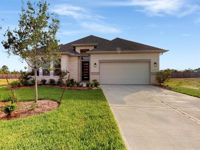 Tomball Single Family Home For Sale: 51 Elander Blossom Drive