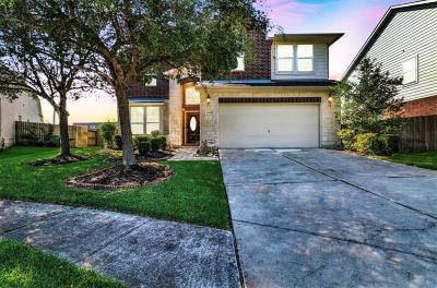 Pearland Single Family Home For Sale: 11904 Auburn Trail Lane
