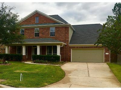 The Woodlands Single Family Home For Sale: 19 Majolica Place