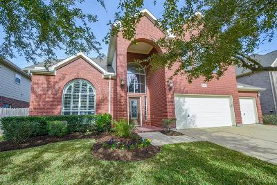 Katy Single Family Home For Sale: 26018 Shady Dawn Lane