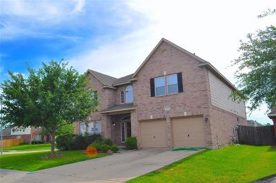 Sugar Land Single Family Home For Sale: 11334 Siamese Lane
