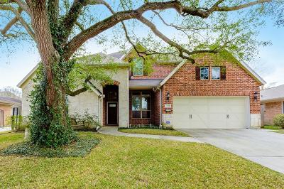 Houston Single Family Home For Sale: 3721 Dumbarton Street