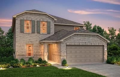 Houston Single Family Home For Sale: 14606 Sierra Garden Drive