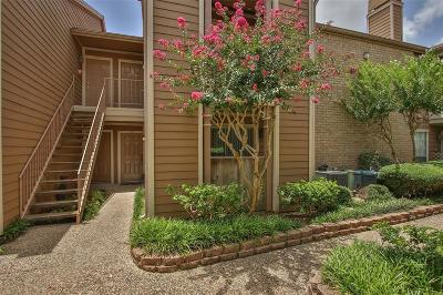 Houston Condo/Townhouse For Sale: 1860 White Oak Drive #221