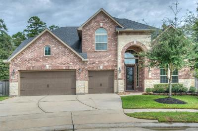 Humble Single Family Home For Sale: 12918 Pinson Mound Court