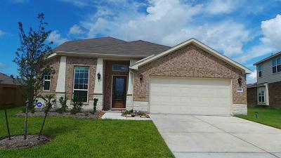 Houston Single Family Home For Sale: 13918 Bayfield Glen Lane