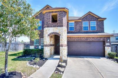 Galveston County, Harris County Single Family Home For Sale: 1805 Dry Willow Court