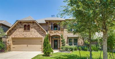 Tomball Single Family Home For Sale: 143 N Greenprint Circle