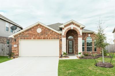 League City Single Family Home For Sale: 6524 Gable Hollow Lane