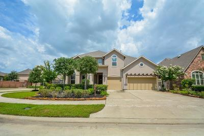 Sugar Land Single Family Home For Sale: 1003 Arden Oaks Drive