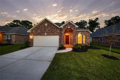 Kingwood Single Family Home For Sale: 21357 Somerset Shores Crossing