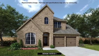 Pearland Single Family Home For Sale: 3703 Timber Grove Court