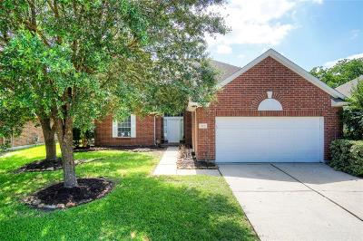 Humble Single Family Home For Sale: 18619 Summer Anne Drive