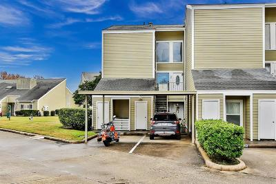 Montgomery Condo/Townhouse For Sale: 54 April Point Drive S