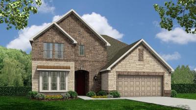 Rosenberg Single Family Home For Sale: 7410 Dry Stone Lane